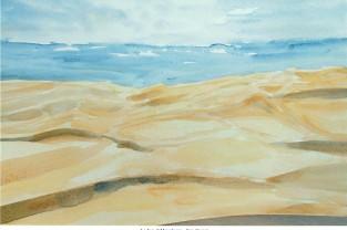 005 - Le dune di Maspalomas - Gran Canaria
